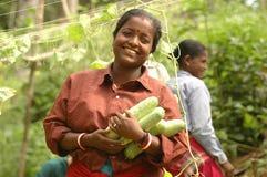 Η ευτυχής Farmer με τη συγκομιδή στοκ φωτογραφία με δικαίωμα ελεύθερης χρήσης