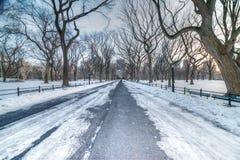 Η λεωφόρος, Central Park, NYC Στοκ Εικόνες