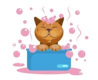 Καλλωπισμός γατών Πλύσιμο γατών Αστείο ρύγχος διανυσματική απεικόνιση