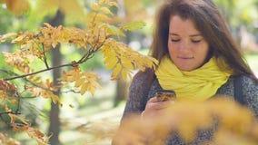 Η εύθυμη κοκκινομάλλης νέα γυναίκα με τις φακίδες στο τηλέφωνο και διαβάζει τα μηνύματα περπατώντας στο πάρκο φθινοπώρου στο α φιλμ μικρού μήκους