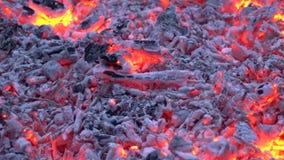 Η ζάλη ικανοποιώντας 4k κοντά επάνω βλέπει στον ξυλάνθρακα που καίγεται με το ζωηρόχρωμο πορτοκαλί φως στην εστία φλογών πυρών πρ απόθεμα βίντεο