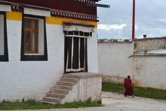 Η ζωή γύρω από το ναό Taktsa σε Zoige Τυχερός ότι αυτή η θέση είναι στοκ εικόνες