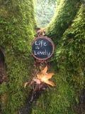 Η ζωή είναι καλή επιβεβαίωση Στοκ εικόνα με δικαίωμα ελεύθερης χρήσης