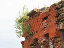 Η ζωή ενός κτηρίου τούβλου Στοκ φωτογραφίες με δικαίωμα ελεύθερης χρήσης