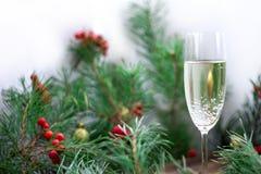 Η ζωή Χριστουγέννων ακόμα, champaign, πεύκο διακλαδίζεται, κόκκινη σορβιά, golde Στοκ εικόνες με δικαίωμα ελεύθερης χρήσης
