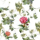 Η ζωγραφική Watercolor των λουλουδιών, αυξήθηκε, άνευ ραφής σχέδιο στο άσπρο υπόβαθρο στοκ φωτογραφία με δικαίωμα ελεύθερης χρήσης