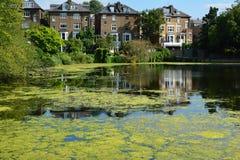 Η ζωντανή άποψη κήπων ρεικιών του Λονδίνου Hampstead λιμνών των λιμνών που χτίζουν τα εγχώρια ζωντανά μεσημεριανά γεύματα στηρίζε Στοκ Φωτογραφίες