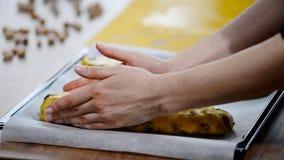 Η ζύμη biscotti των βακκίνιων προετοιμάζεται για ψήνει απόθεμα βίντεο