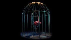 Η ηθοποιός σε ένα κόκκινο κοστούμι σε μια γυμναστική στεφάνη εκτελεί τα τεχνάσματα σε ένα κλουβί Μαύρη ανασκόπηση απόθεμα βίντεο