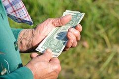 Η ηλικιωμένη γυναίκα κρατά τα χρήματα στα χέρια της Μια ηλικιωμένη γυναίκα με τα δολάρια στα χέρια της Ελεημοσύνες ένδειας Στοκ φωτογραφία με δικαίωμα ελεύθερης χρήσης