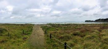 Η ημέρα ενός θυελλώδους καλοκαιριού κατά μήκος των παραλιών με το μακροχρόνιο φύσηγμα χλόης στοκ φωτογραφίες