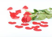 Η ημέρα του βαλεντίνου ρομαντική αυξήθηκε Στοκ Φωτογραφίες