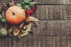 η ημέρα των ευχαριστιών ή το επίπεδο ευχετήριων καρτών έννοιας αποκριών βρέθηκε Beauti Στοκ εικόνα με δικαίωμα ελεύθερης χρήσης