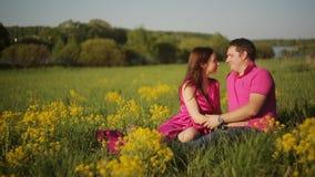 Η ημερομηνία το ζεύγος στο λιβάδι απόθεμα βίντεο