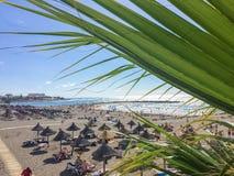 Η ηλιακή ακτή του Ατλαντικού Ωκεανού Tenerife Στοκ φωτογραφία με δικαίωμα ελεύθερης χρήσης