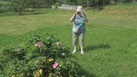 Η ηλικιωμένη γιαγιά παίρνει τις φωτογραφίες το πάρκο φιλμ μικρού μήκους