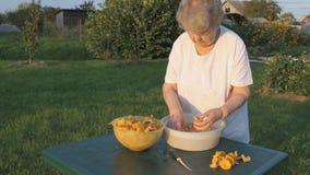 Η ηλικιωμένη γυναίκα χωρίζει chanterelle τα μανιτάρια φιλμ μικρού μήκους
