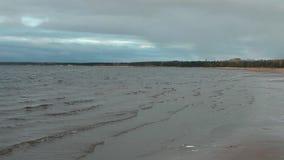 Η θάλασσα της Βαλτικής κυμάτων που οργανώνεται seascape ακτών φιλμ μικρού μήκους