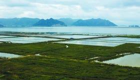 Η θάλασσα του καλλιεργήσιμου εδάφους Στοκ εικόνες με δικαίωμα ελεύθερης χρήσης
