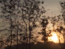 Η θαμπάδα της ανατολής το πρωί Στοκ φωτογραφία με δικαίωμα ελεύθερης χρήσης