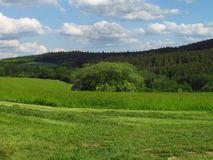 Η θερινή αγροτική λοφώδης επαρχία με το σμαραγδένιο πράσινο λιβάδι, προσπαθεί και καλύπτει στον ουρανό στοκ εικόνα με δικαίωμα ελεύθερης χρήσης