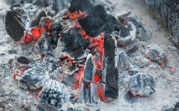Η θερμότητα από το μμένο ξύλο συνδέεται την πυρά προσκόπων σε ένα πικ-νίκ Στοκ εικόνα με δικαίωμα ελεύθερης χρήσης