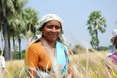 Η θηλυκή Farmer στοκ εικόνες