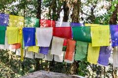 Η θιβετιανή βουδιστική σημαία προσευχής περιλαμβάνει τα κόκκινα, πράσινα, κίτρινα, μπλε και άσπρα χρώματα στο Sikkim, Ινδία Στοκ Εικόνα