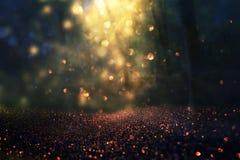 Η θολωμένη αφηρημένη φωτογραφία του φωτός εξερράγη μεταξύ των δέντρων και ακτινοβολεί χρυσά φω'τα bokeh Στοκ Εικόνα
