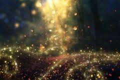 Η θολωμένη αφηρημένη φωτογραφία του φωτός εξερράγη μεταξύ των δέντρων και ακτινοβολεί χρυσά φω'τα bokeh Στοκ Φωτογραφία