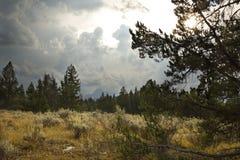 Η θύελλα καλύπτει πέρα από τη αρτεμισία, τα δέντρα πεύκων, και τα απόμακρα βουνά, Jackson Hole, Ουαϊόμινγκ Στοκ εικόνες με δικαίωμα ελεύθερης χρήσης