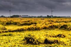 Η θύελλα Στοκ φωτογραφία με δικαίωμα ελεύθερης χρήσης