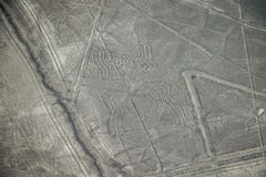 Η διάσημη άποψη της εικόνας αραχνών σε Nazca, Περού Στοκ φωτογραφία με δικαίωμα ελεύθερης χρήσης