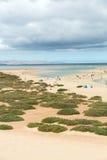 Η διάσημη λιμνοθάλασσα Risco Ελ Πάσο Playas de Sotavento, Στοκ φωτογραφίες με δικαίωμα ελεύθερης χρήσης