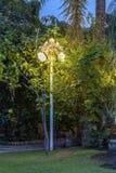 Ηλιακοί διακοσμητικοί λαμπτήρες σε έναν κήπο νύχτας Στοκ φωτογραφίες με δικαίωμα ελεύθερης χρήσης