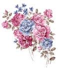 η διακοσμητική εικόνα απεικόνισης πετάγματος ραμφών το κομμάτι εγγράφου της καταπίνει το watercolor διανυσματική απεικόνιση