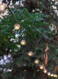 Η διακοσμητική ηλεκτρική γιρλάντα των βολβών φωτισμού κρεμά στο πίτουρο δέντρων Στοκ φωτογραφία με δικαίωμα ελεύθερης χρήσης