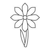 Η διακόσμηση άνοιξη λουλουδιών Gerbera λεπταίνει τη γραμμή Στοκ φωτογραφίες με δικαίωμα ελεύθερης χρήσης