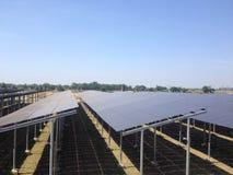 Ηλιακό αγρόκτημα στοκ εικόνες με δικαίωμα ελεύθερης χρήσης