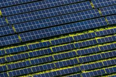 Ηλιακό αγρόκτημα Στοκ φωτογραφίες με δικαίωμα ελεύθερης χρήσης