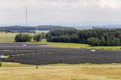 Ηλιακό πάρκο στοκ φωτογραφίες με δικαίωμα ελεύθερης χρήσης