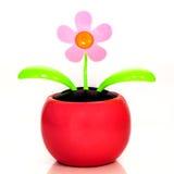 Ηλιακό τροφοδοτημένο πλαστικό λουλούδι Στοκ Εικόνες
