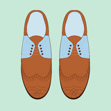 Η διανυσματική απεικόνιση με τα άτομα διαμορφώνει τα παπούτσια Κλασικά παπούτσια ξοντρών παπούτσεων Παπούτσια ατόμων ` s Oxfords Στοκ Φωτογραφία