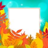 Η διανυσματική κάρτα με το ντεκόρ φθινοπώρου και βγάζει φύλλα Στοκ Εικόνα