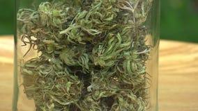 Η ιατρική κάνναβη καννάβεων συγκόμισε ξηρός ένα γυαλί της ποιότητας σπόρων για την παραγωγή των αλοιφών και των κρεμών που αναπτύ απόθεμα βίντεο