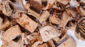 Η ιατρική SangBaiPi χορταριών ή ο φλοιός Mori ή ο άσπρος φλοιός ρίζας μουριών περιστρέφονται και σταματούν φιλμ μικρού μήκους