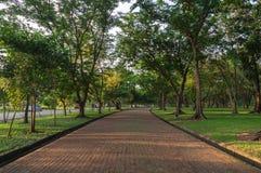 Η διαδρομή Jogging σταθμεύει δημόσια στοκ εικόνα με δικαίωμα ελεύθερης χρήσης
