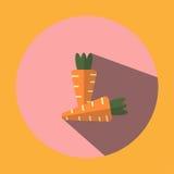Η διευκρινισμένη εικόνα παρουσιάζει δύο διαμορφωμένα καρότο εικονίδια Στοκ Φωτογραφία
