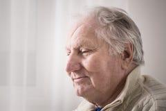 Ηλικιωμένα άτομα εσωτερικά Στοκ Εικόνα