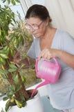 Ηλικιωμένη γυναίκα που φροντίζει για τις σε δοχείο εγκαταστάσεις Στοκ Εικόνες